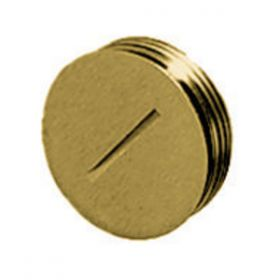 Delivery Systems, Replacement Flush Plug for HBL5236, Brass